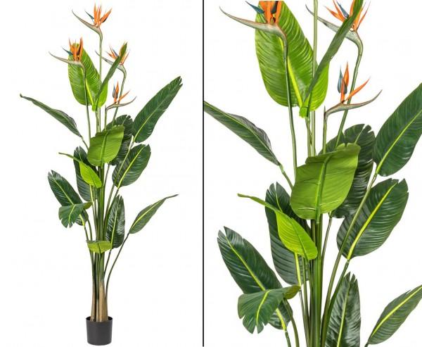 Strelizien Kunstpflanze 155cm mit 15 Blättern und 4 Blüte im Topf