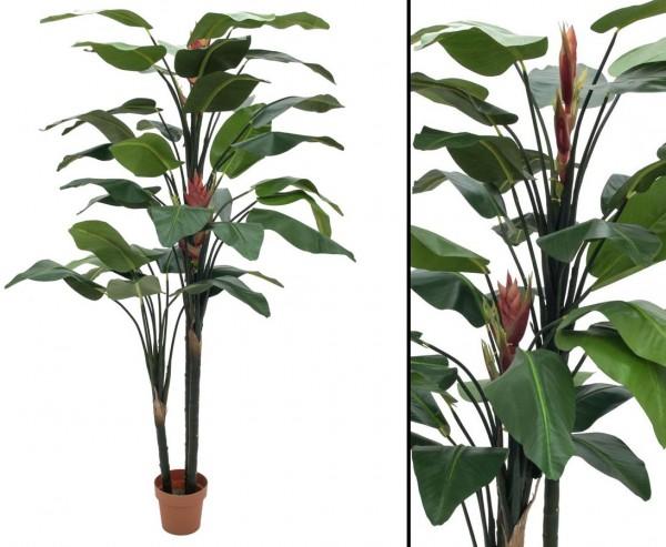 Strelizie Kunstpflanze mit zwei großen bunten Blüten Höhe ca. 220cm