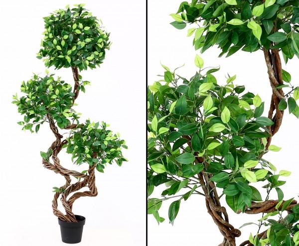 Kunstbaum Ficus mit Echt Holz Spiralstamm Höhe 160cm