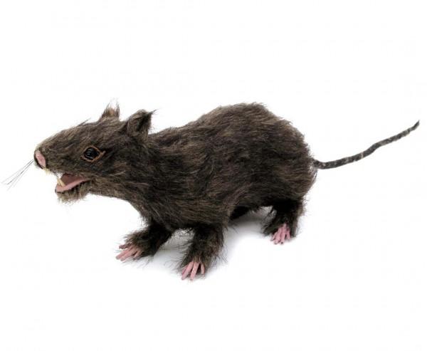 Ratte, lebensecht, mit Fell 30cm lang