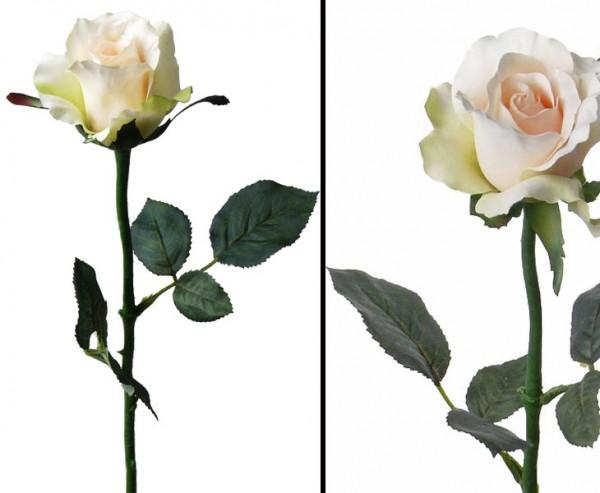 Kunstblumen, Rose Alice creme farbiger Blüte Länge 58cm