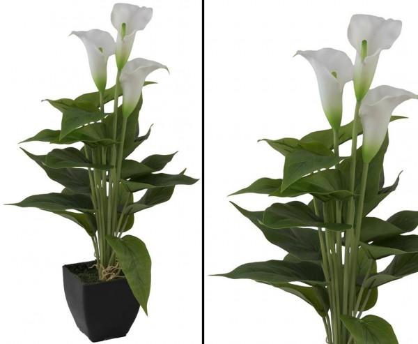 Calla Kunstpflanze im Topf mit 3 weißen Blüten 43cm