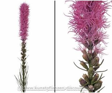 Kunstblume Prachtscharte liatris spicata rosa farbig, 80cm