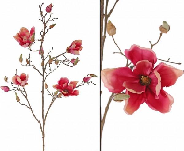 Deko Zweig Magnolien mit 4 magenta-rötlich Blüten, Höhe 107cm