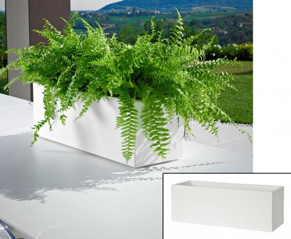 Mini Pflanzkasten weiß mit 50x18x18cm aus Kunststoff