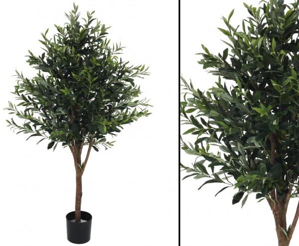 Olivenbaum Naturstamm mit 1920 olivgrüne Blätter Höhe 130cm