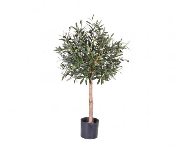 Olivenbäumchen 75cm mit 1040 Blätter und 24 Oliven