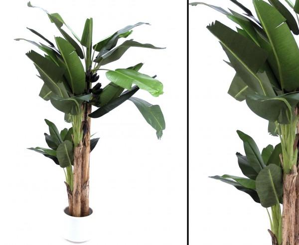 Bananenbaum Kunstpalme mit 30 Blätter und 3 Stämmen Höhe ca. 280cm