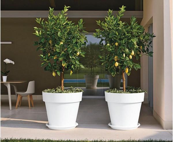 Gut und günstiger Übertopf in Weiß Höhe 31cm und Ø 35cm passend für fast alle Kunstpflanzen