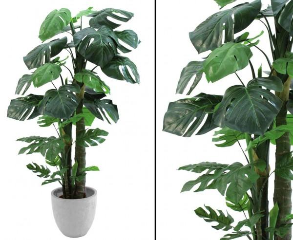 Splitphilodendron, küstliche Pflanze im Topf, Höhe 160cm