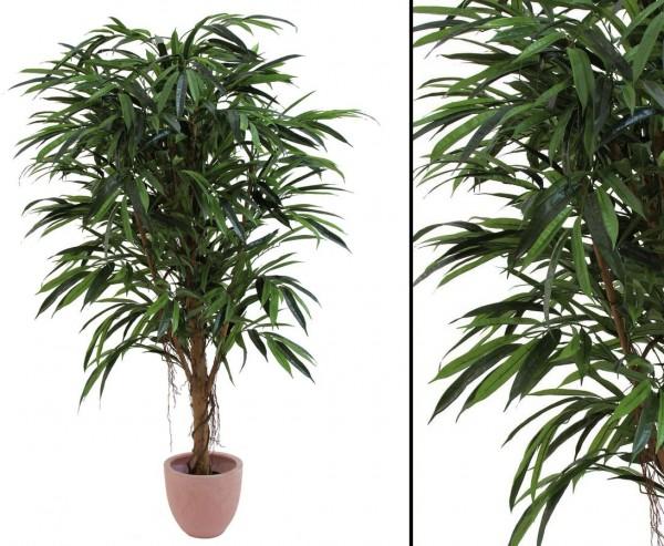 Ficus Longifolia Kunstbaum mit 1002 Blätter, Naturstamm, Höhe 150cm