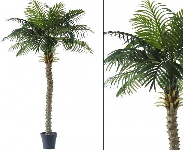 Kunstpalme Kokos mit 24 Wedeln im Topf 180cm hoch